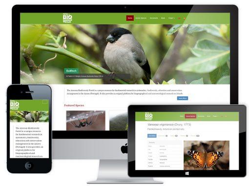 Web Design e Programação – Portal da Biodiversidade dos Açores